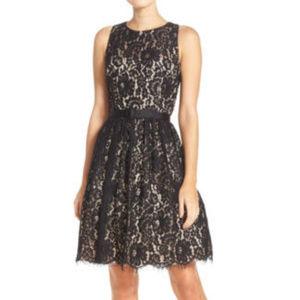 ELIZA J Lace Fit & Flare Dress S.8